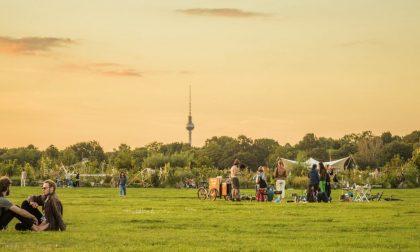 Cosa c'è di bello da imparare dagli orti condivisi di Berlino