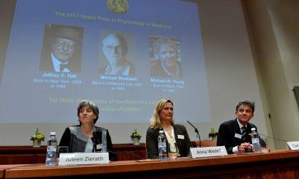 Che cos'hanno scoperto di preciso i tre nuovi Nobel per la Medicina