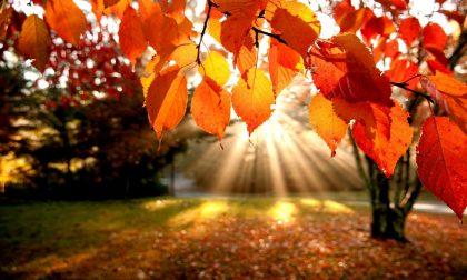 Dieci tipiche frasi dei bergamaschi su questo strano e caldo ottobre