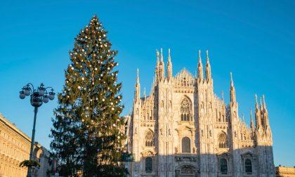 Cinque notizie che non lo erano L'albero di Milano non è costato…