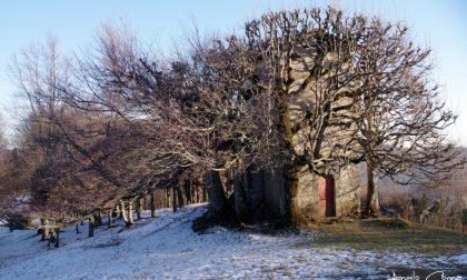 Alle pendici del Pizzo Cerro – Angelo Corna