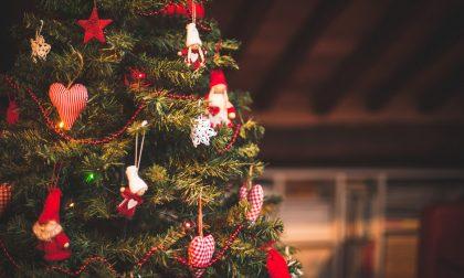 Dieci tradizionali frasi bergamasche sull'arrivo dell'albero di Natale