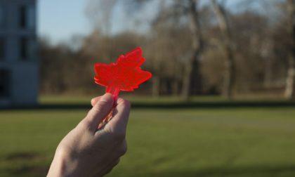 Dario, il ricercatore di Comun Nuovo e le sue foglie artificiali a Londra