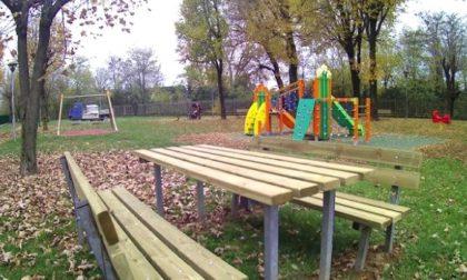 Mozzo e la cura del verde urbano I parchi ora sono più belli e sicuri