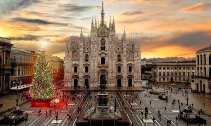 È albero di Natale mania ovunque (soprattutto nelle piazze italiane)
