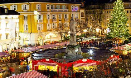 Cinque notizie che non lo erano Una sull'albero rimosso a Bolzano