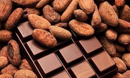 Buone notizie, contro il colesterolo mandorle e cioccolato sono perfetti