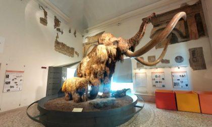 A Bergamo riaprono musei e mostre, ma solo in settimana. Ecco quali e gli orari