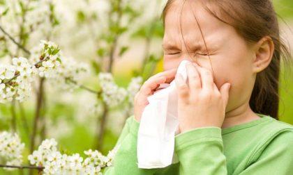 Come prevenire le crisi allergiche che colpiscono bimbi e ragazzi