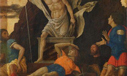 La bella storia del Mantegna appena scoperto alla Carrara