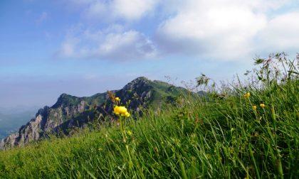 In vetta al monte Venturosa Se cercate un po' di pace