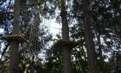 Un salto dalla torre di 20 metri! Al via il nuovo Parco Avventura