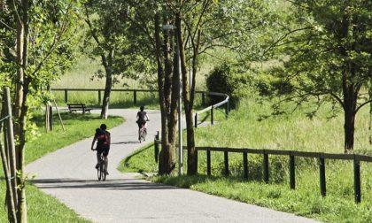 La carica dei 1.300 alberi (in più) E il Parco dei Colli si ingrandisce