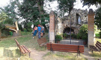 Tagliata la quercia secolare a guardia della grotta di Lourdes