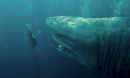 Il film da vedere nel weekend Shark. Il primo squalo, tensione