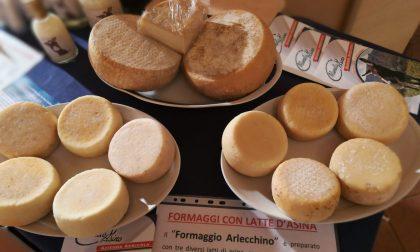 Arlecchino e Tasso, nuovi formaggi E sui monti c'è la Polenta d'Autore