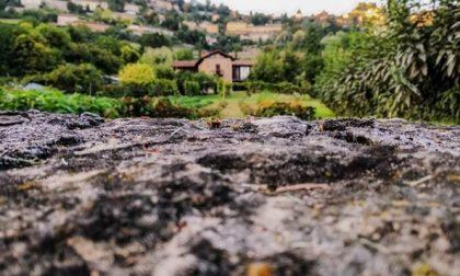 Città Alta e Colli - Carlotta Breno