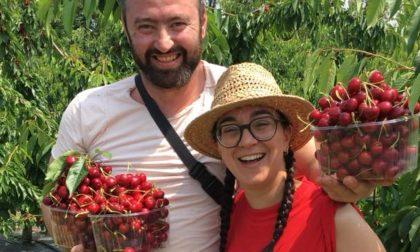 L'azienda Fior di Frutta a Gorle Raccogliamo ciliegie insieme!