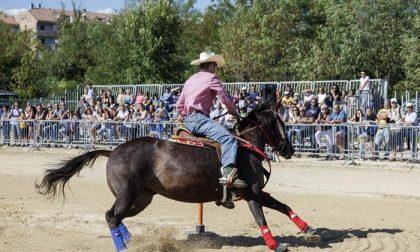 Sant'Alessandro novello cowboy con una mandria da 250 cavalli
