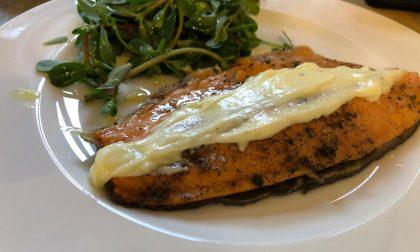 Chotto in Borgo Santa Caterina Un'idea di gastronomia conviviale