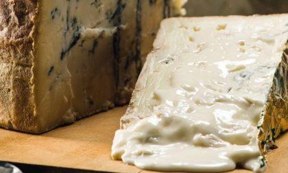 Le nove DOP dei formaggi orobici (una ad una, acquolina assicurata)