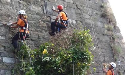 25mila ore di lavoro volontario per pulire le Mura di Bergamo