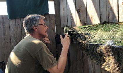 Ore e ore seduti in un capanno per fotografare il martin pescatore