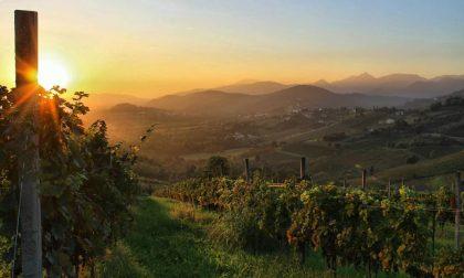 Brindisi al weekend da Scanzo – Luca