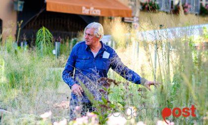 Chi è Piet Oudolf, che ci ha regalato una Piazza Vecchia verde così bella