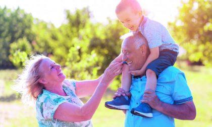 Tanti auguri nonni! Sorprendeteli con una sorpresa su BergamoPost
