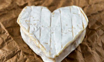 Se amate i formaggi, potete gioire Forse (forse) non fanno così male