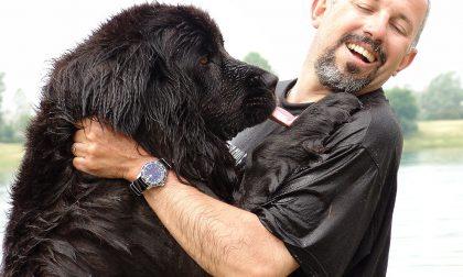 La storia dei cani che salvano vite ha avuto inizio qui, a Seriate