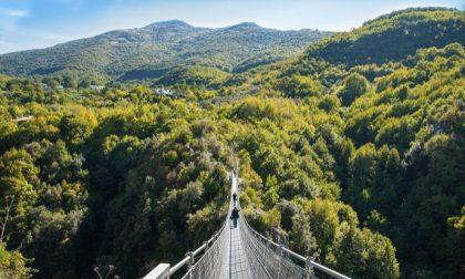Il ponte tibetano più alto d'Europa appena inaugurato in Valtellina