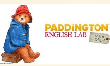 """Al Carosello c'è l'orso Paddington con il suo nuovo """"english lab"""""""