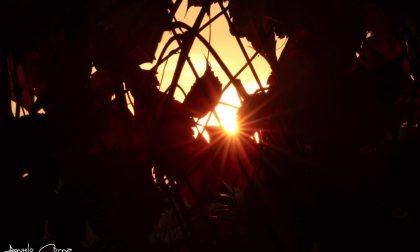 Un raggio di sole al lunedì – Angelo Corna