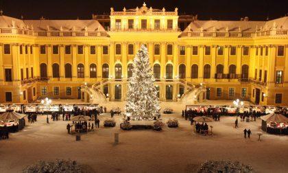 Posti fantastici e dove trovarli Sacher, regalità e bellezza: è Vienna