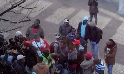 La Lega chiede bus diversi per italiani e migranti. Angeloni: «Che schifo, l'apartheid a Bergamo»