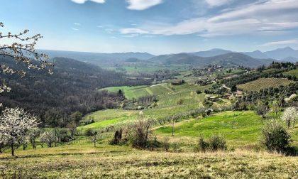 Le colline di Bergamo – Francesca Quadri