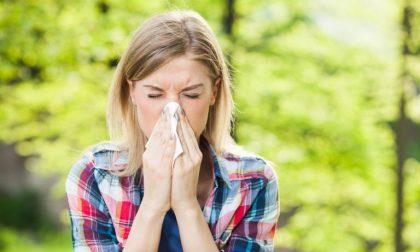 Come proteggersi dalle allergie