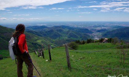 La pianura dal Monte Ballerino – Angelo Corna