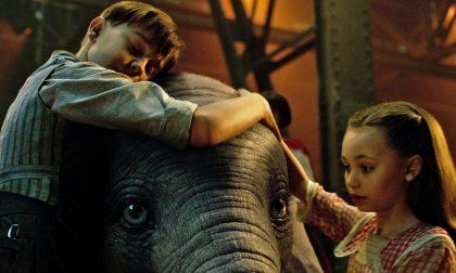 Il film da vedere nel weekend Dumbo, il ritorno di un classico