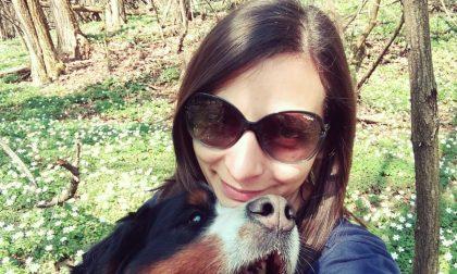 Cane ucciso per rubare un camper I proprietari: «Una scena straziante»