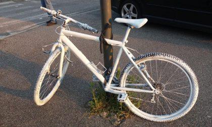Giorgio, Maurizio e una bici bianca