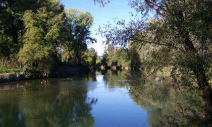 Il Parco del Serio si espande tra Covo, Seriate e Pedrengo