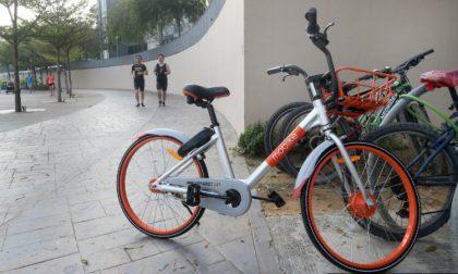 Mobike, aumentano gli iscritti in città: toccata la quota di trentamila utenti