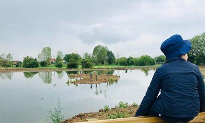 Nuovo laghetto, alberi e un frutteto tra Grumello al Piano e Colognola