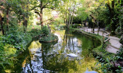 Riapre il Parco Olmi alla Malpensata (e tutti resteranno aperti dalle 8 fino alle 20)