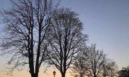 Senza nuvole, al tramonto – Federico Risi