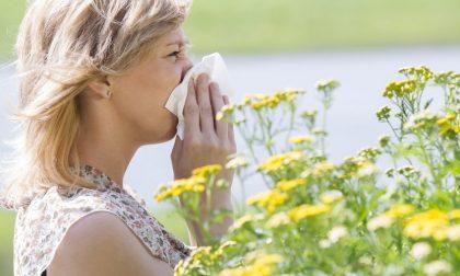 I rimedi naturali alle allergie
