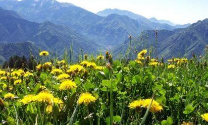 Il weekend nelle valli orobiche #108 Tutti gli eventi da non perdere